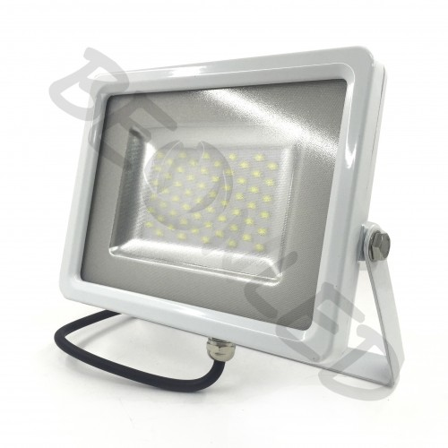 20W Proyector LED Blanco Neutro